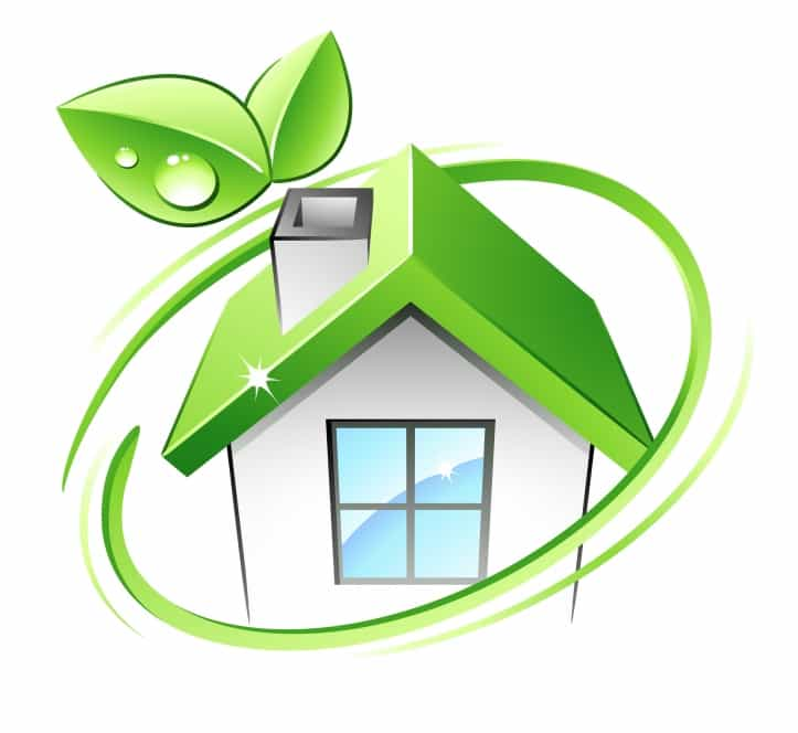 Green cleaning products work from home business eco for Green products for the home