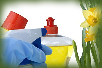 Benefits of Using Environmentally Friendly Cleaning Products … at Home